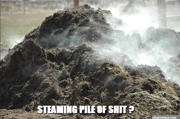 Steaming pile of Shit ?